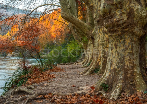 Stock photo: Walkway near river in Fontaine-de-Vaucluse, France