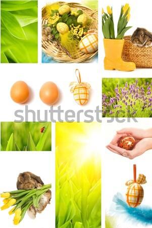 Stock fotó: Húsvét · kollázs · virágok · kezek · tavasz · étel