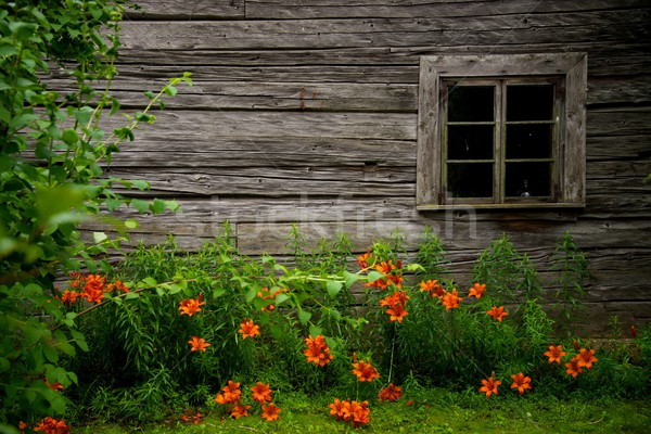 Old rural wooden house Stock photo © Nejron