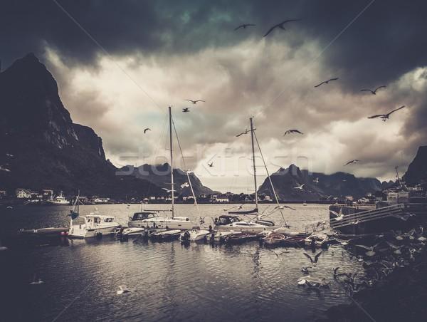 Sirályok repülés csónak falu Norvégia víz Stock fotó © Nejron