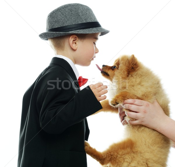 Little boy in hat and black suit with little spitz Stock photo © Nejron