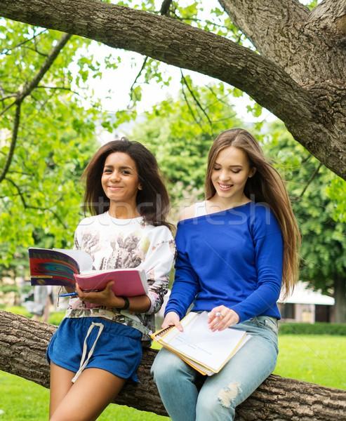 Többnemzetiségű lányok diákok város park lány Stock fotó © Nejron