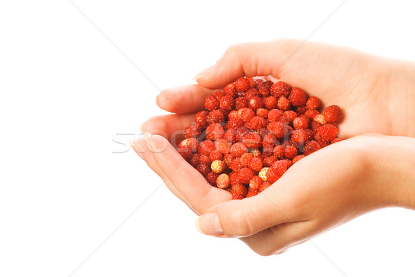 Handful of strawberries isolated on white background Stock photo © Nejron