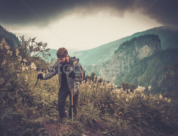 Man with hiking equipment walking in mountain forest Stock photo © Nejron