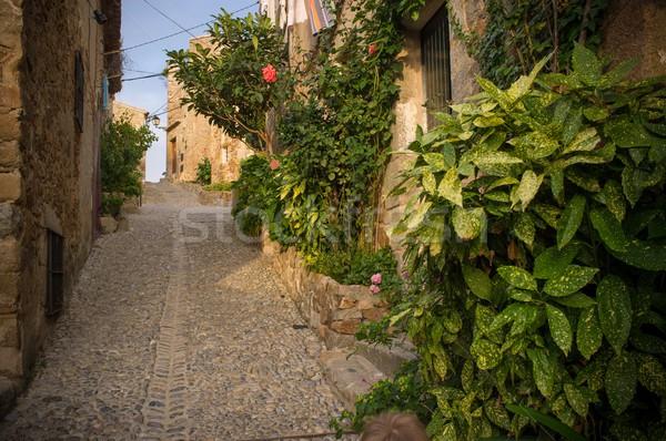 Keskeny utca óváros virágok épület város Stock fotó © Nejron