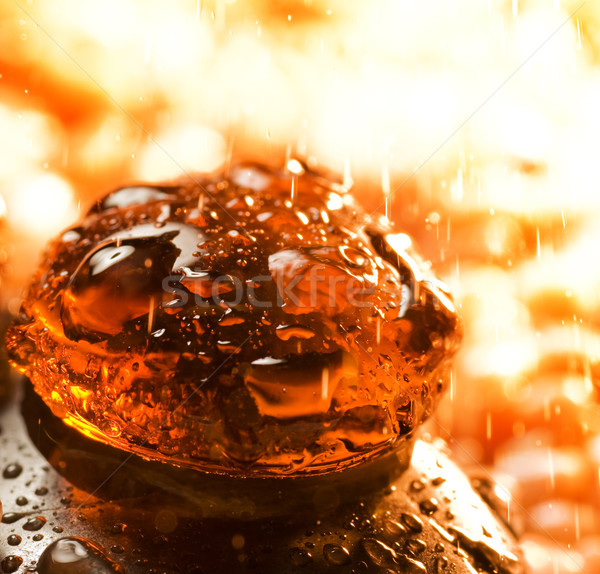 Zdjęcia stock: Streszczenie · martwa · natura · charakter · deszcz · sztuki · przestrzeni