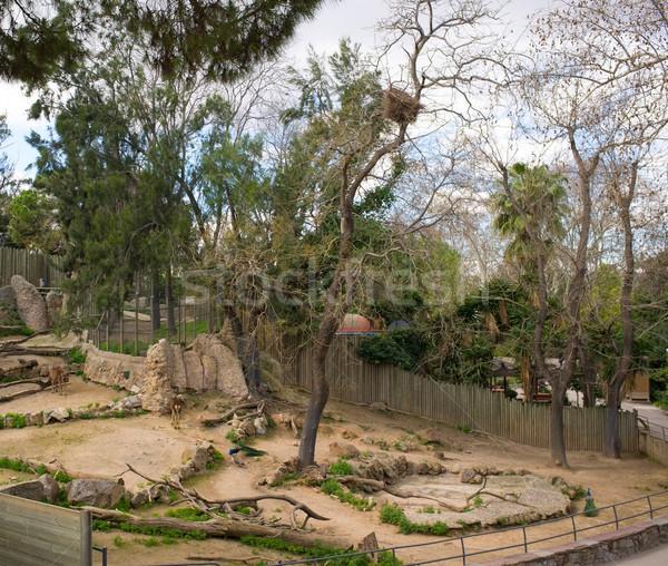 Animal enclosure in a zoo Stock photo © Nejron