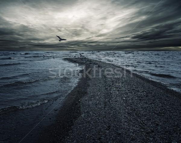 Burzliwy niebo ciemne morza wody ocean Zdjęcia stock © Nejron