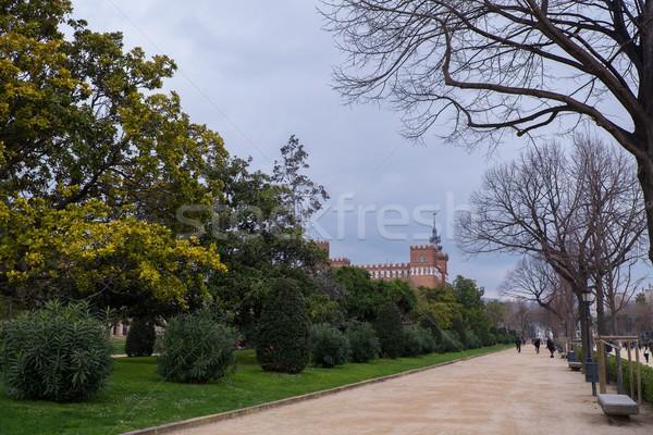 Hermosa parque Barcelona España resumen jardín Foto stock © Nejron
