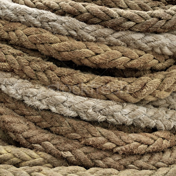 Cable close-up Stock photo © Nejron