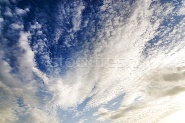 Bright white and dark stormy cumulus clouds Stock photo © Nejron