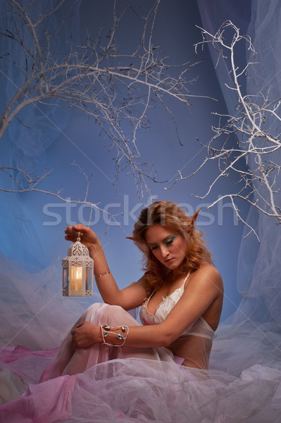 Elf in magical winter forest with lantern. Stock photo © Nejron