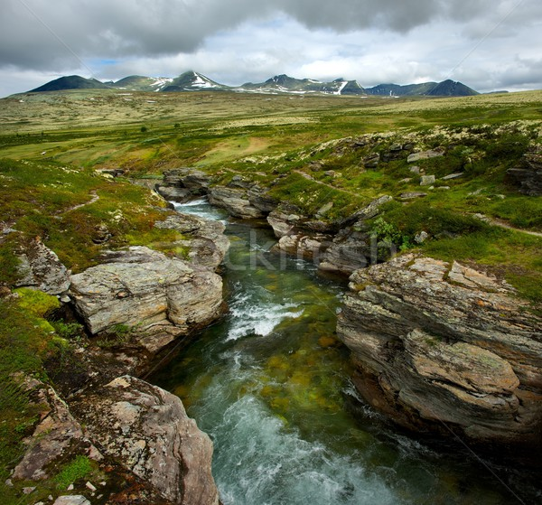 Fast river in a mountains Stock photo © Nejron