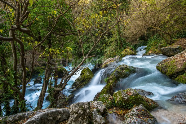 Fast river in Fontaine-de-Vaucluse, France Stock photo © Nejron