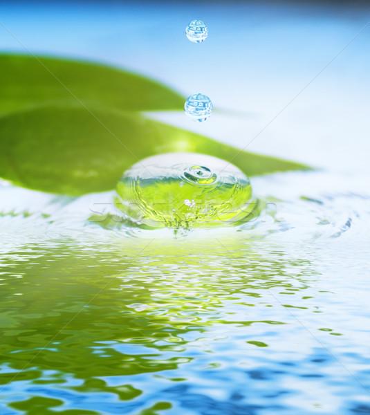 Spa natürmort sığ soyut doğa Stok fotoğraf © Nejron
