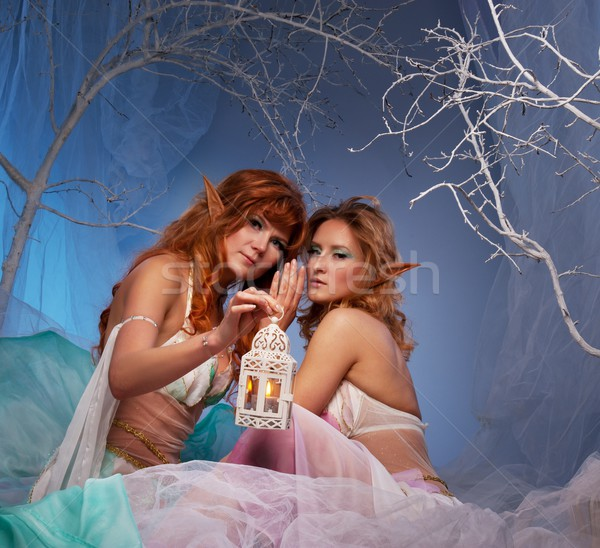 Elves in magical winter forest with lantern. Stock photo © Nejron