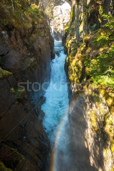 Fast river in mountain forest Stock photo © Nejron