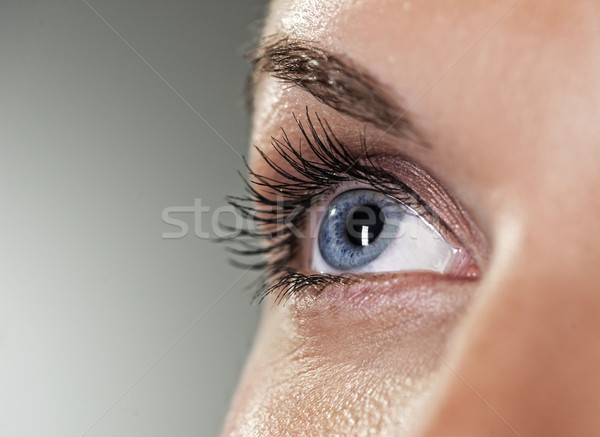 Blue eye on grey background (shallow DoF)  Stock photo © Nejron