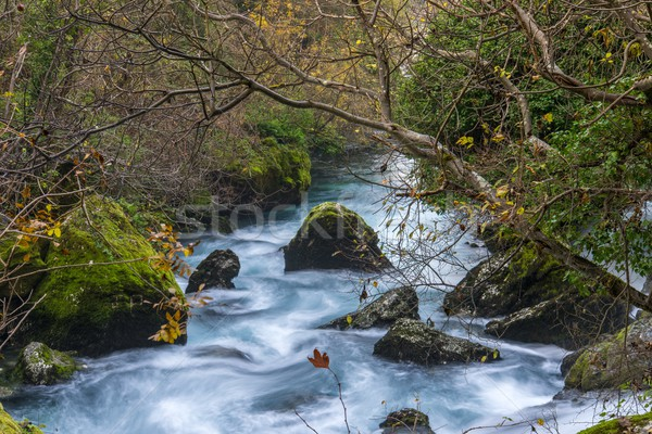 Stock photo: Fast river in Fontaine-de-Vaucluse, France