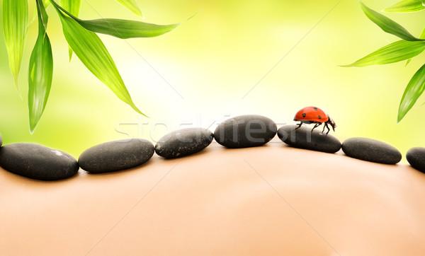 Massage with hot stones Stock photo © Nejron