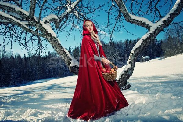Red hood Stock photo © Nejron
