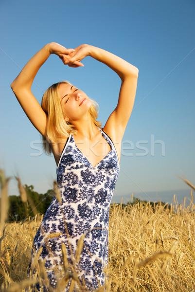 Gyönyörű szőke lány nyújtás búzamező nő Stock fotó © Nejron