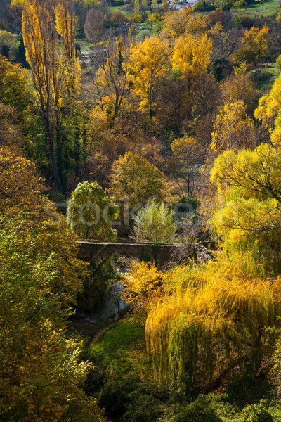 Old bridge over river in autumn landscape Stock photo © Nejron