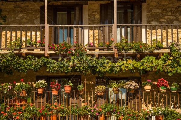 балкона многие цветок цветы лет зеленый Сток-фото © Nejron