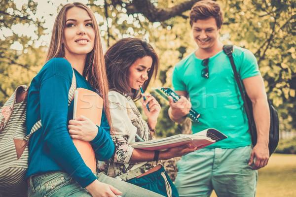 Groep studenten stad park meisje Stockfoto © Nejron