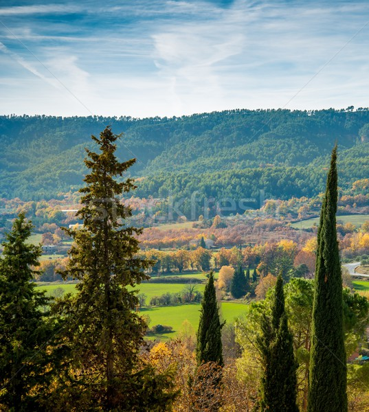 Zdjęcia stock: Piękna · jesienią · krajobraz · widoku · drzewo