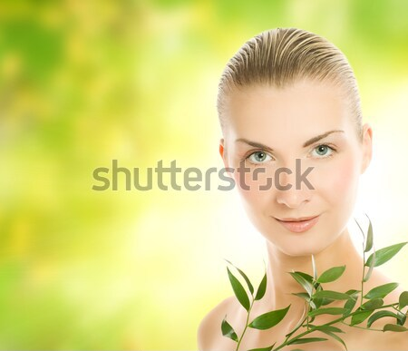 Green leaves at sunny day Stock photo © Nejron