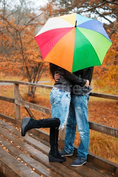 カップル 傘 屋外 美しい 雨の ストックフォト © Nejron