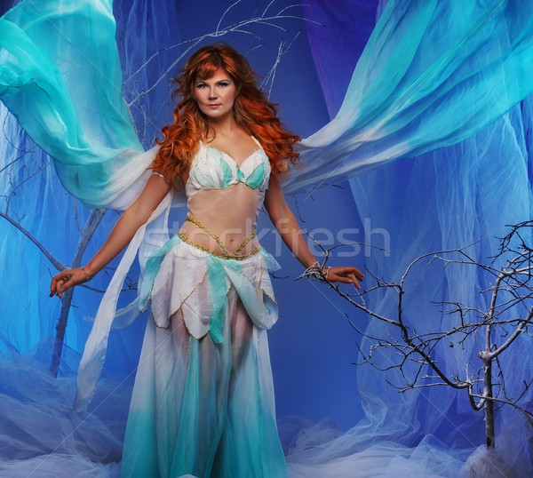 Elf in magical winter forest. Stock photo © Nejron