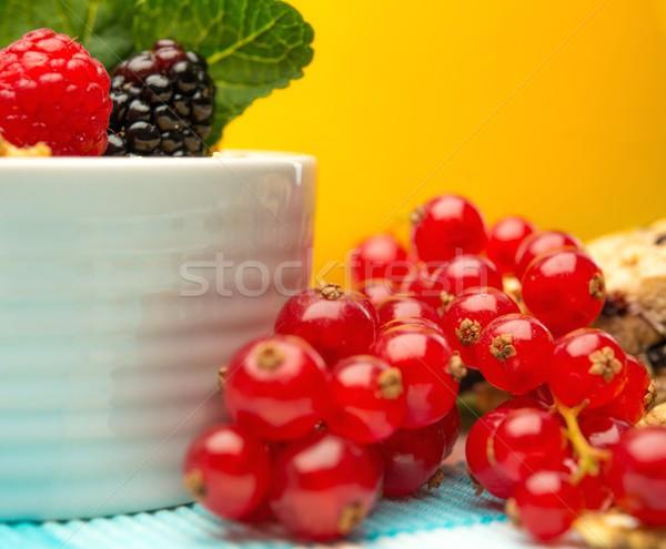 Fresche frutti di bosco ciotola muesli primo piano rosso Foto d'archivio © Nejron