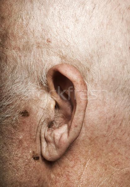 Elderly man's ear Stock photo © Nejron