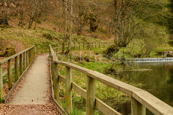 Walkway with wooden rails by the river in an autumn park Stock photo © Nejron
