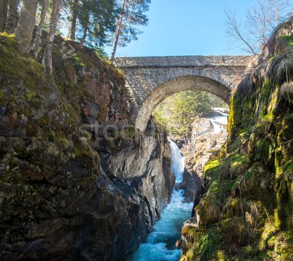 Foto d'archivio: Ponte · veloce · fiume · montagna · foresta · primavera