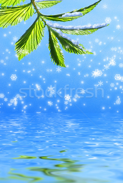 Green leaf on abstract snowflake background reflected in rendere Stock photo © Nejron