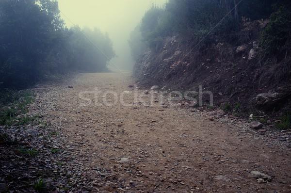 Gravel road in the mountains Stock photo © Nejron
