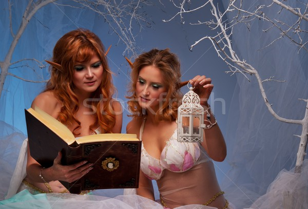 Elves in magical  forest with a book. Stock photo © Nejron