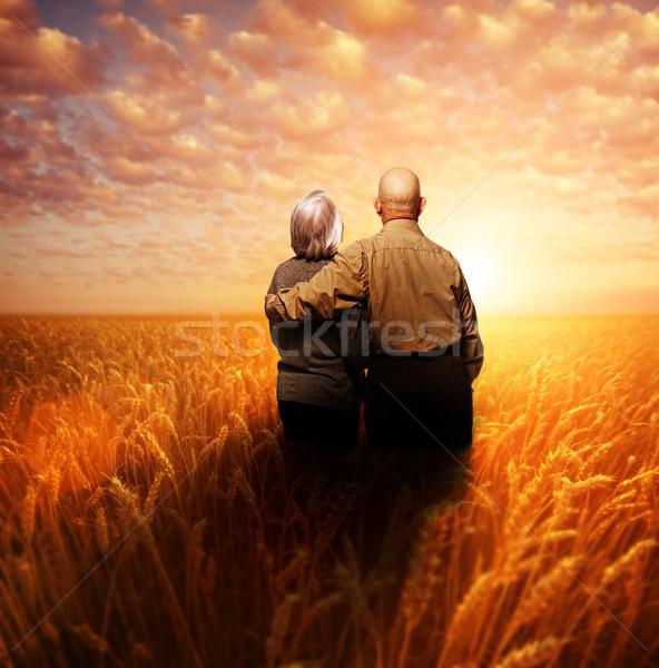 Stock fotó: Idős · pár · áll · búzamező · naplemente · nő · nap