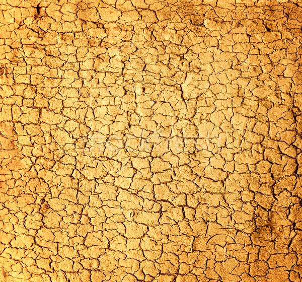 Dry soil texture Stock photo © Nejron