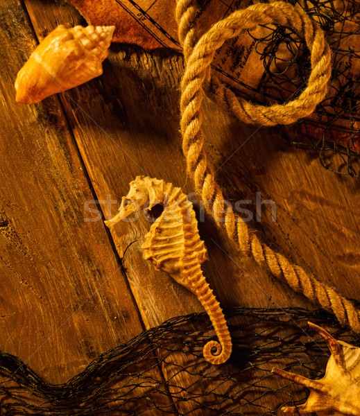 Sea concept on a wooden table background  Stock photo © Nejron