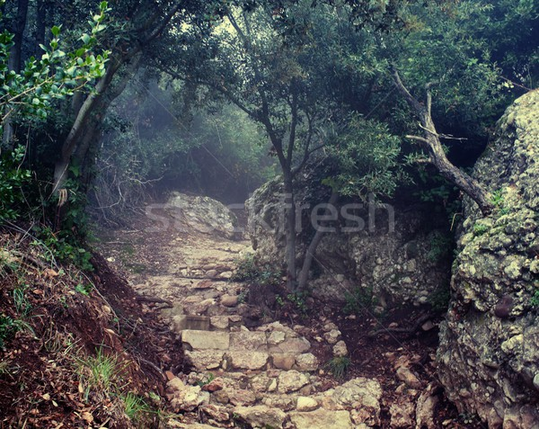 Stock photo: Old damaged road in the mountains.
