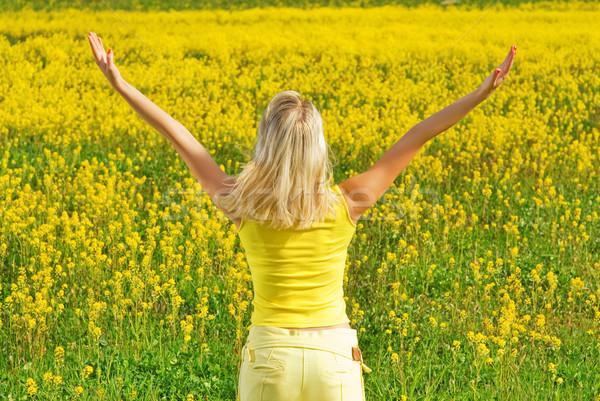 Belle jeune femme champ de fleurs fille herbe résumé Photo stock © Nejron