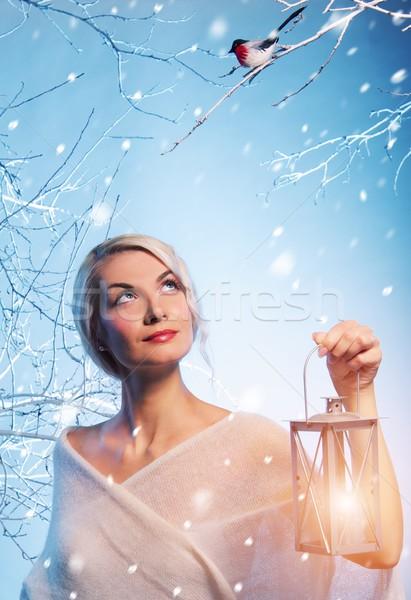 魅力のある女性 冬 森林 少女 ファッション 光 ストックフォト © Nejron