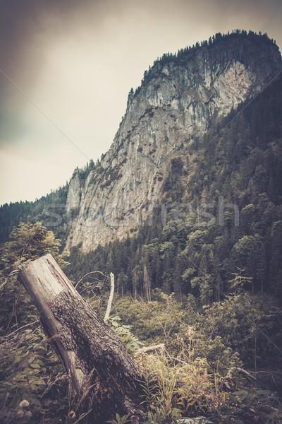 Beautiful mountains landscape view Stock photo © Nejron