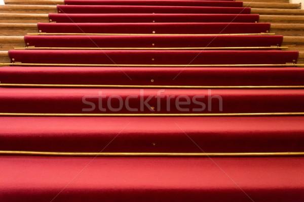 Tapete vermelho passos casa piso tapete Foto stock © Nejron