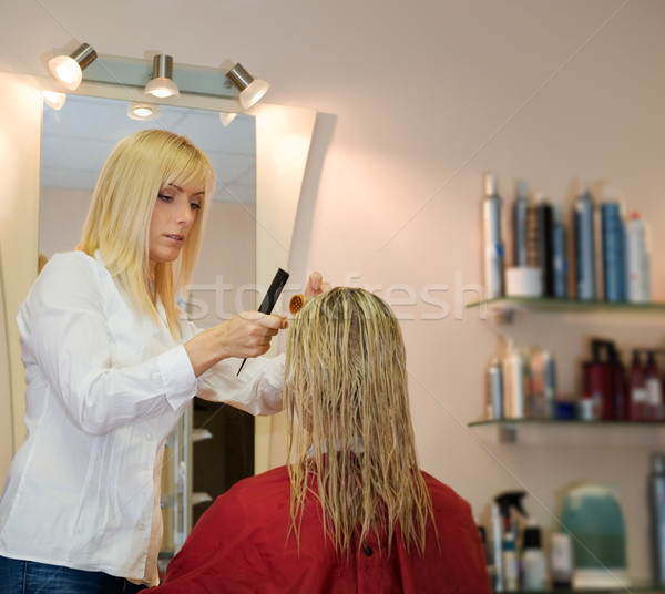 Female hairdresser working in beauty salon Stock photo © Nejron