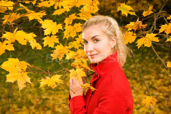 Stock fotó: Gyönyörű · fiatal · nő · ősz · erdő · kezek · mosoly